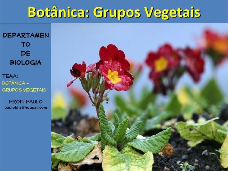 Botânica: Grupos VegetaisDepartamen     to     de  BiologiaTema:Botânica –Grupos Vegetais  Prof. Paulopaulobhz@hotmail.com