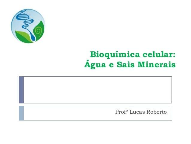 Bioquímica celular: Água e Sais Minerais Profº Lucas Roberto