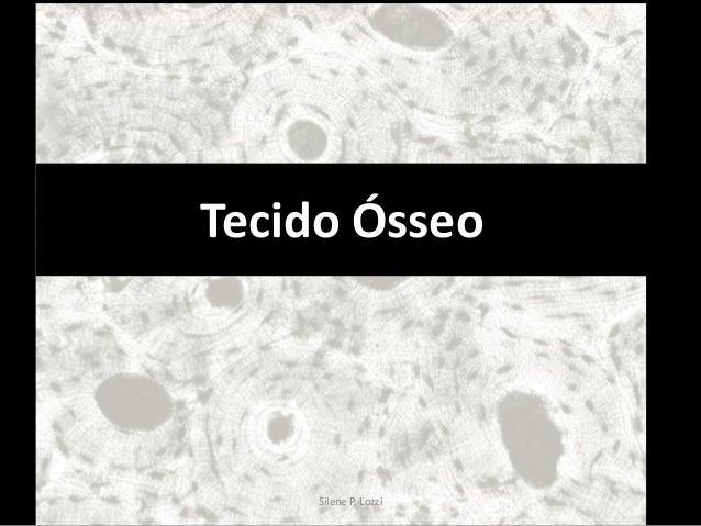 Tecido Ósseo  Silene P. Lozzi