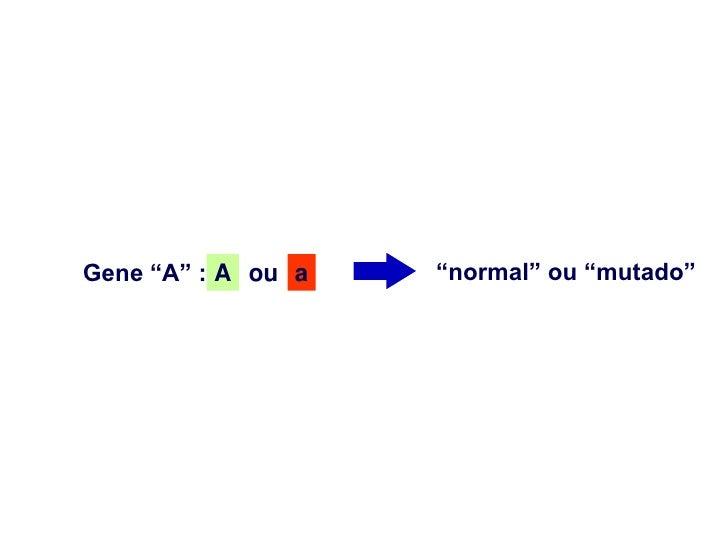 """Gene """"A"""" : A ou a   """"normal"""" ou """"mutado"""""""