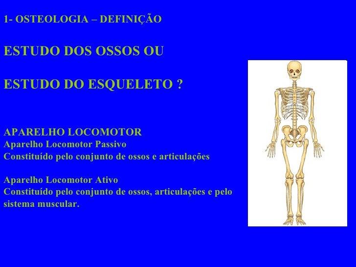 1- OSTEOLOGIA – DEFINIÇÃO ESTUDO DOS OSSOS OU ESTUDO DO ESQUELETO ? APARELHO LOCOMOTOR Aparelho Locomotor Passivo  Constit...