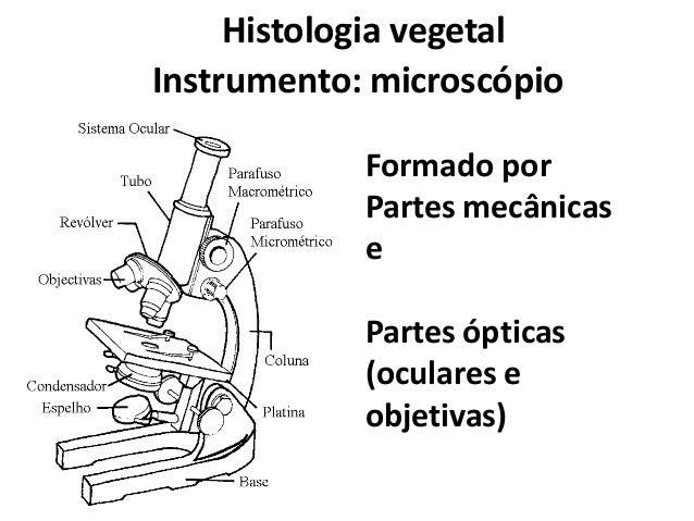 Histologia vegetal Instrumento: microscópio Formado por Partes mecânicas e  Partes ópticas (oculares e objetivas)