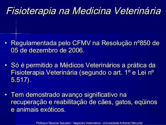 Professor Mauricio Salvador - Negócios Veterinários - Universidade Anhembi Morumbi Fisioterapia na Medicina VeterinFisiote...