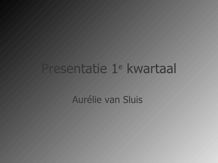 Presentatie 1 e  kwartaal Aurélie van Sluis