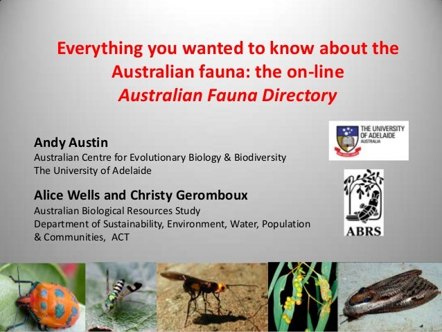 Everything you wanted to know about the Australian fauna: the on-line Australian Fauna Directory Andy Austin Australian Ce...