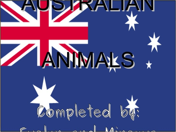 AUSTRALIAN ANIMALS Completed by: Evelyn and Minerva