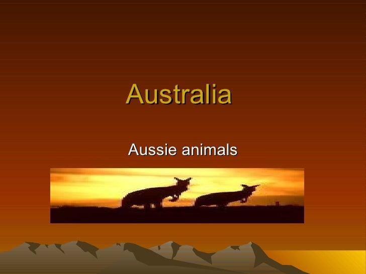 Australia  Aussie animals