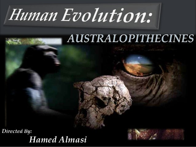 Directed By:          Hamed Almasi