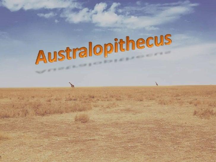 Australopithecus<br />