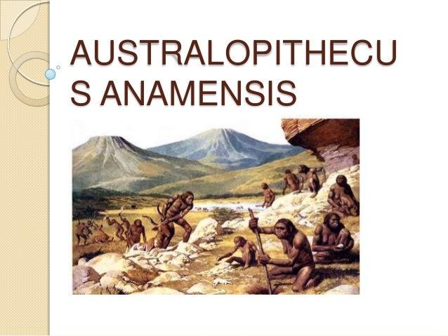 australopithecus africanus articles