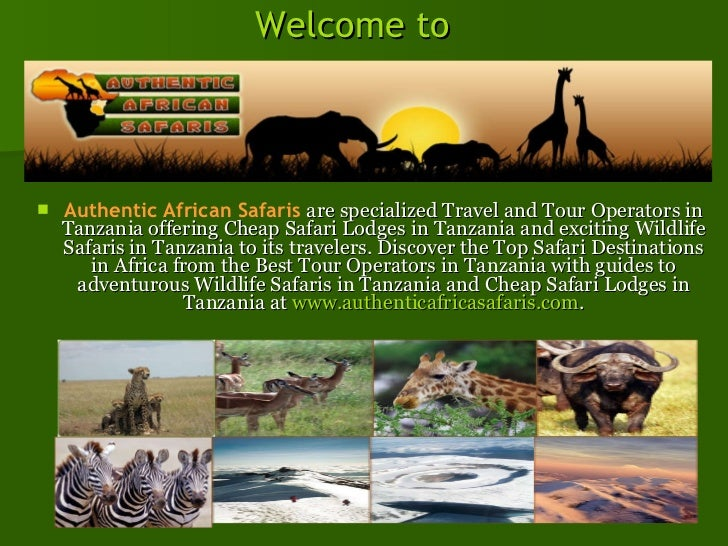 Welcome to  <ul><li>Authentic African Safaris   are specialized Travel and Tour Operators in Tanzania offering Cheap Safar...