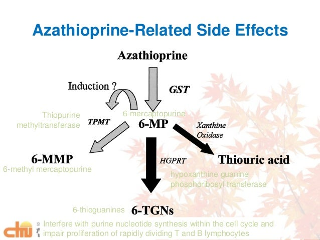 Imuran And Prozac Interactions