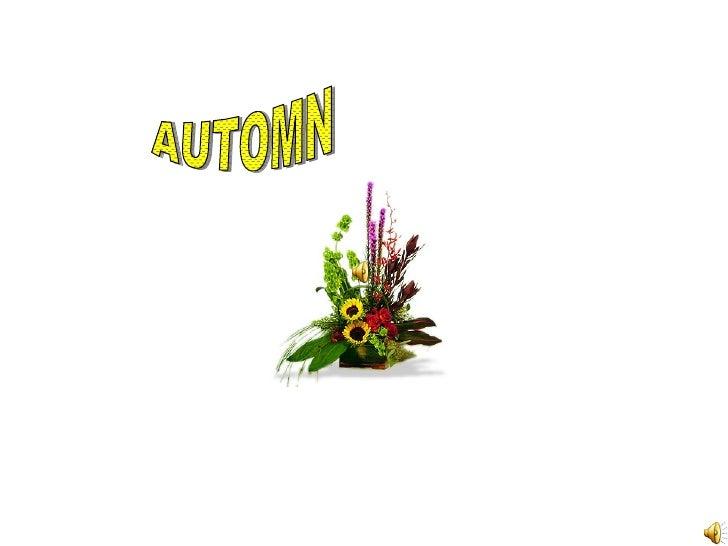 AUTOMN