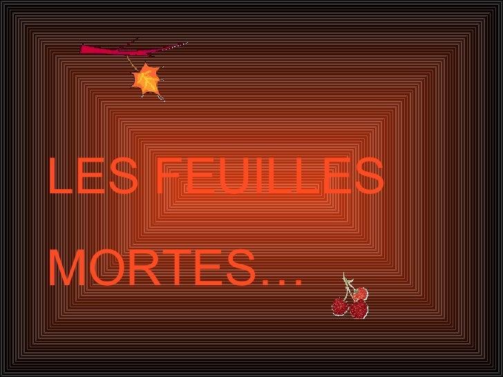 LES FEUILLES MORTES…