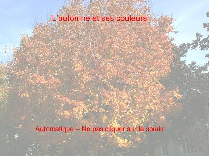 L'automne et ses couleurs Automatique – Ne pas cliquer sur la souris