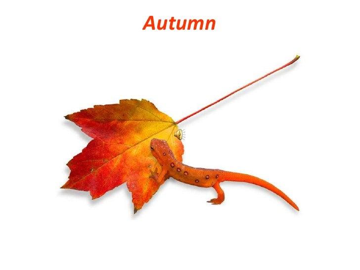 Autumn<br />