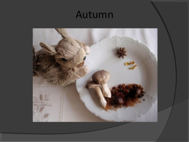 Autumn and winter menus