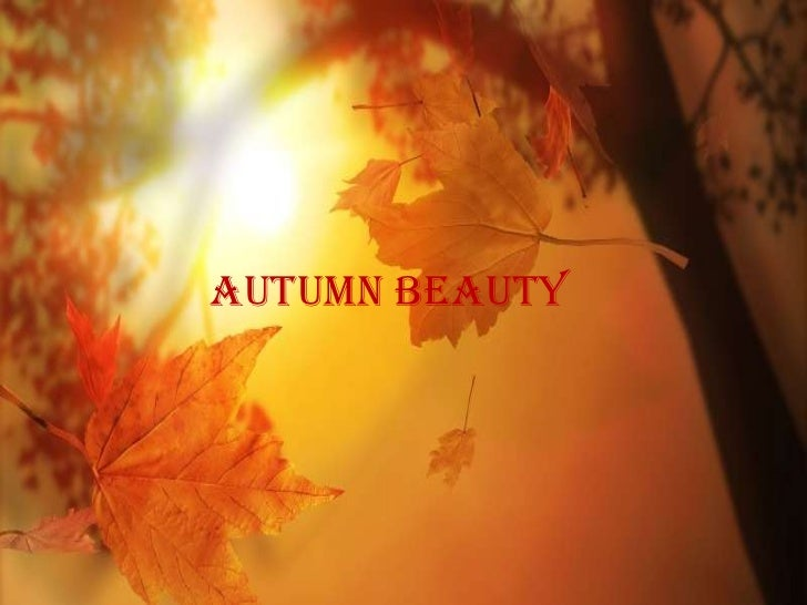 Autumn beautyBest from National Geographic 71