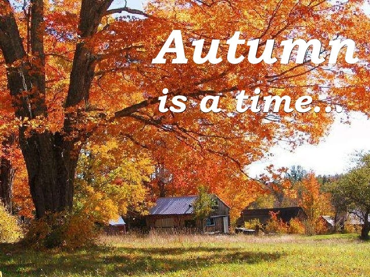 Autumn is a time…