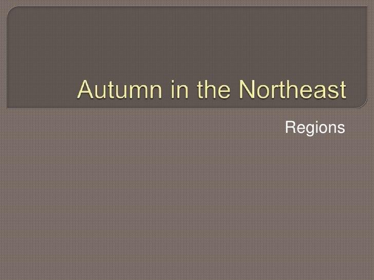 Autumn in the northeast