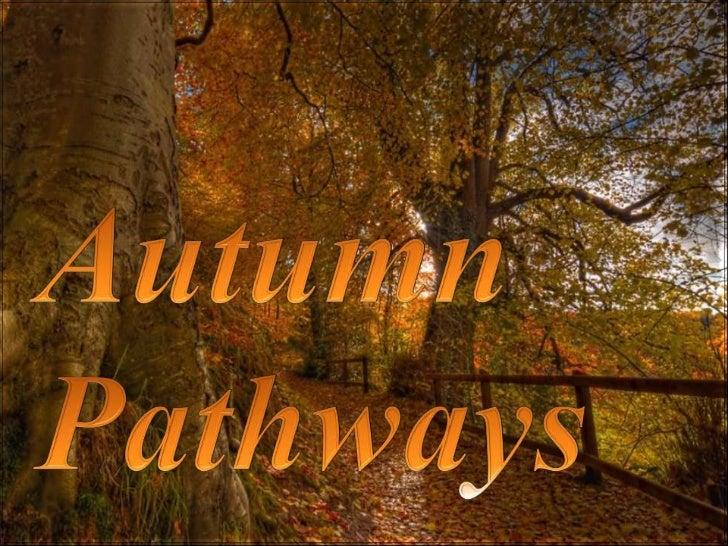 Autumn pathways