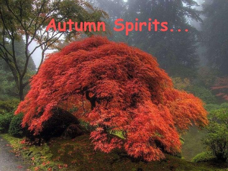 Autumn Spirits...