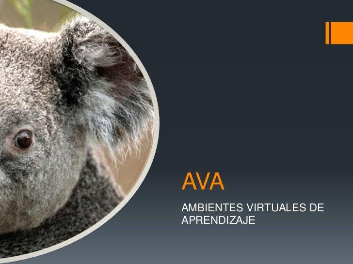 Ava dhg
