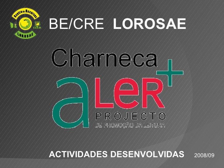 BE/CRE LOROSAE     ACTIVIDADES DESENVOLVIDAS   2008/09
