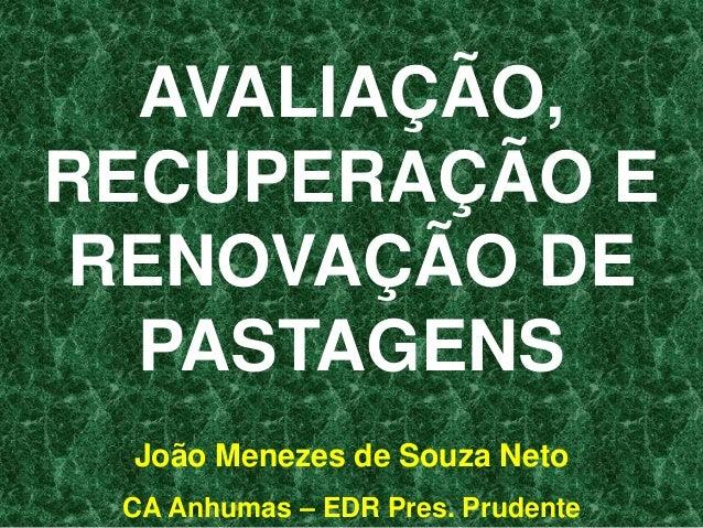 AVALIAÇÃO,RECUPERAÇÃO ERENOVAÇÃO DE  PASTAGENS João Menezes de Souza Neto CA Anhumas – EDR Pres. Prudente