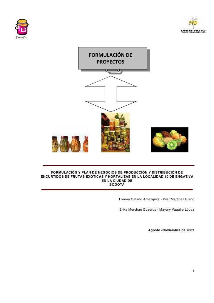 FORMULACIÓN DE                          PROYECTOS         FORMULACIÓN Y PLAN DE NEGOCIOS DE PRODUCCIÓN Y DISTRIBUCIÓN DE E...
