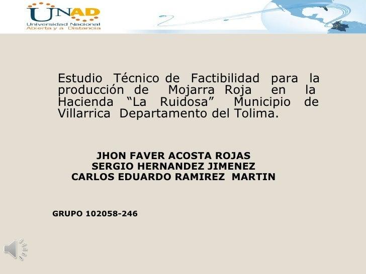 """Estudio Técnico de Factibilidad para la producción de     Mojarra Roja    en  la Hacienda """"La Ruidosa""""       Municipio de ..."""