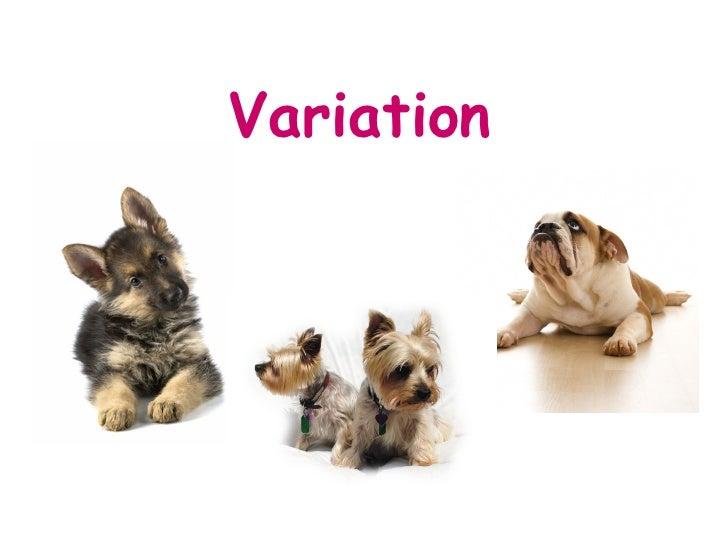 A) Variation