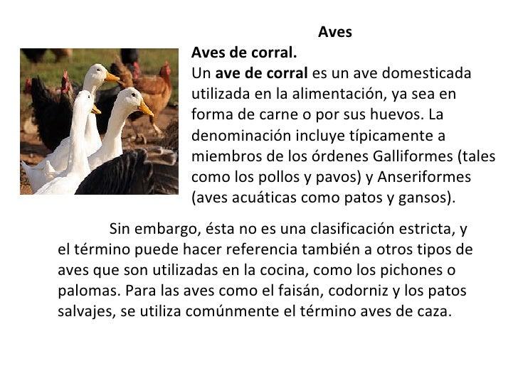 Aves.pptxmod 11