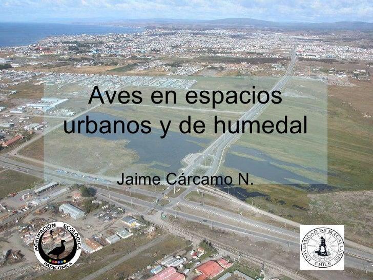 Aves en espacios urbanos y de humedal Jaime Cárcamo N.