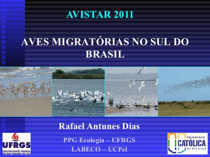 Rafael Antunes Dias PPG Ecologia – UFRGS LABECO – UCPel AVISTAR 2011 AVES MIGRATÓRIAS NO SUL DO BRASIL