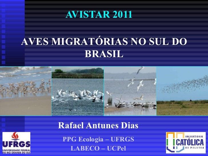 Aves migratorias- Rio Grande do Sul - Avistar2011