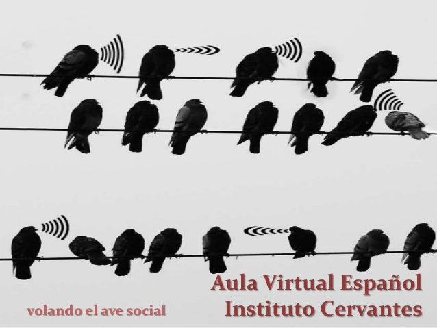 Aula Virtual Españolvolando el ave social    Instituto Cervantes