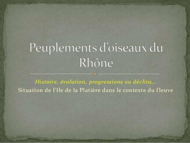 Histoire, évolution, progressions ou déclins…  Situation de l'Ile de la Platière dans le contexte du f leuve