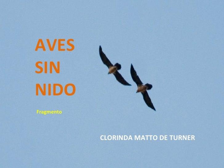 Ave Sin Nido [1943]