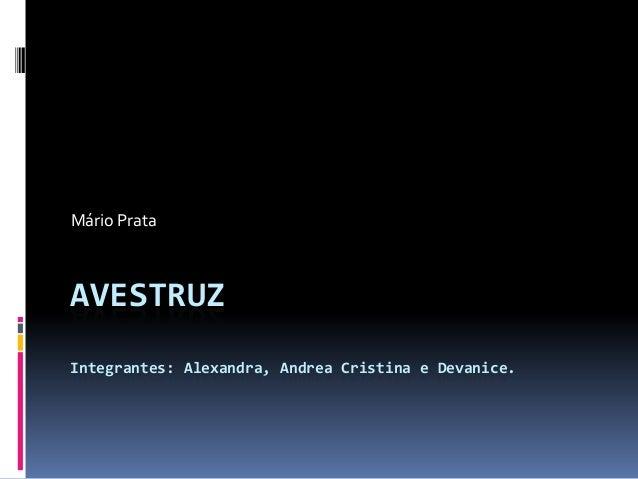 AVESTRUZIntegrantes: Alexandra, Andrea Cristina e Devanice.Mário Prata