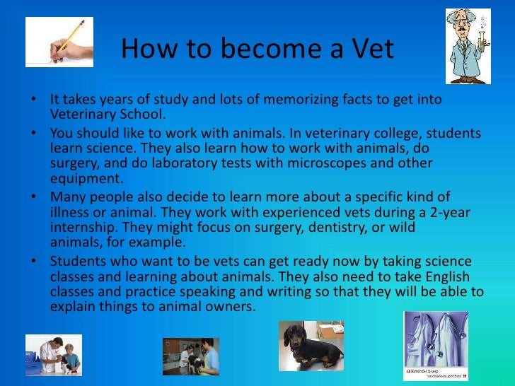 Should i become a Veterinarian?