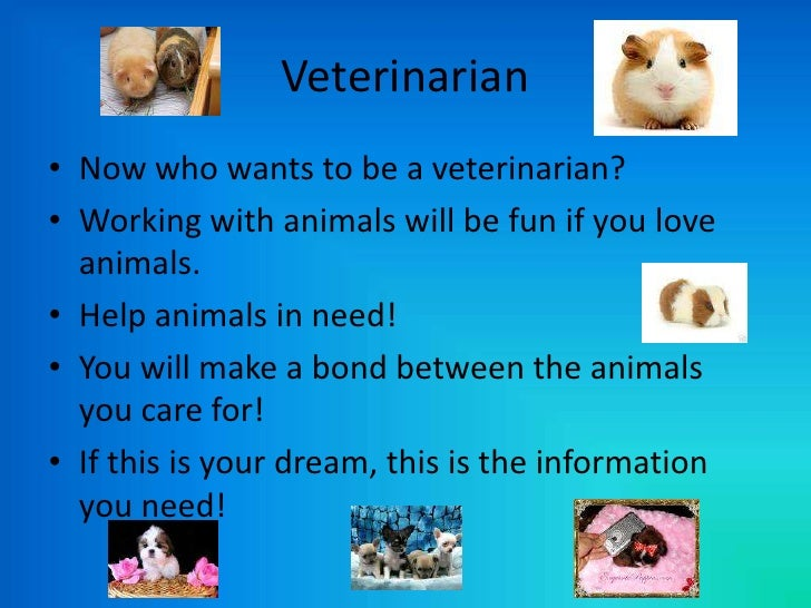 I wanna be a vet for LARGE animals?