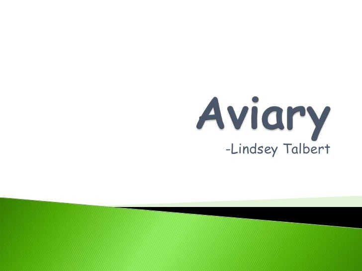 Aviary<br />-Lindsey Talbert<br />