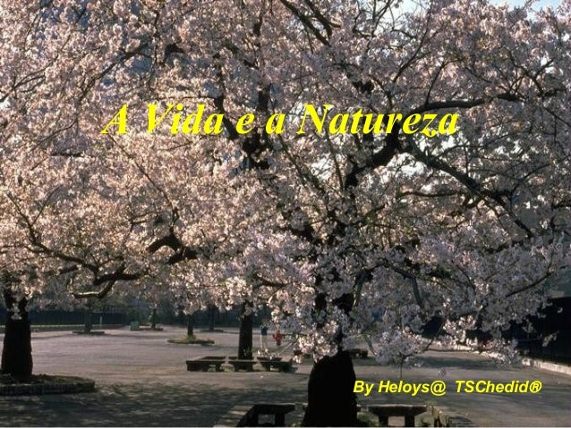 By Heloys@ TSChedid® A Vida e a Natureza