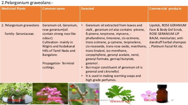 Medicinal plants and their uses in tamil books