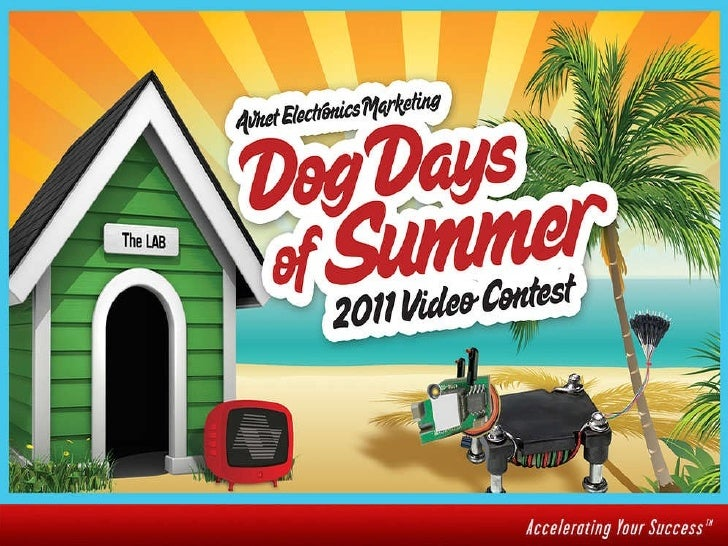 Avnet's Dog Days of Summer Contest