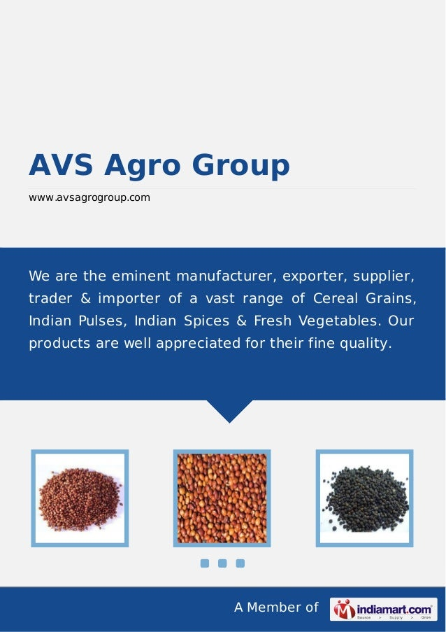 Avs agro-group