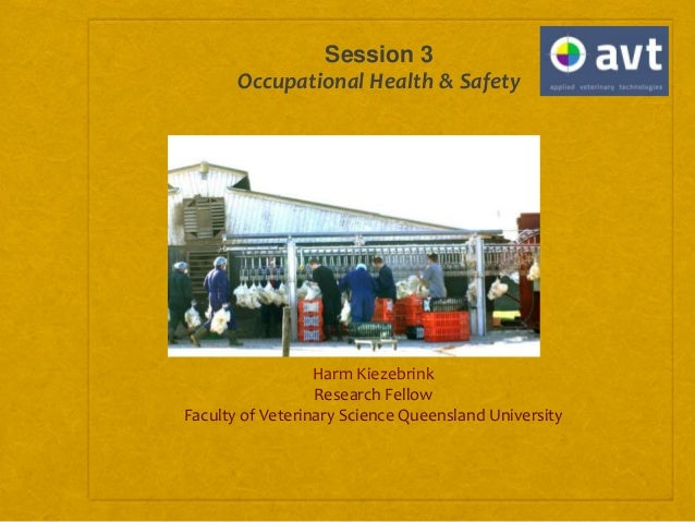 Session 3 Occupational Health & Safety Harm Kiezebrink Research Fellow Faculty of Veterinary Science Queensland University