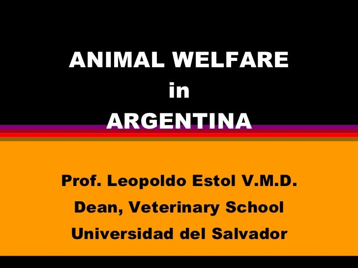 ANIMAL WELFARE in ARGENTINA Prof. Leopoldo Estol V.M.D. Dean, Veterinary School Universidad del Salvador