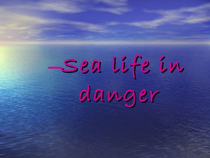 <ul><ul><ul><ul><li>Sea life in danger </li></ul></ul></ul></ul>